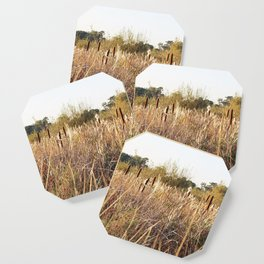 Reedmace, Scirpus Coaster