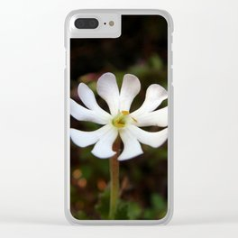 Wanderer's Light Clear iPhone Case