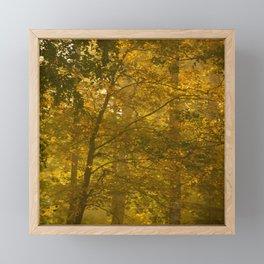 Forest in Fall Color Autumn Scene #decor #society6 #buyart Framed Mini Art Print
