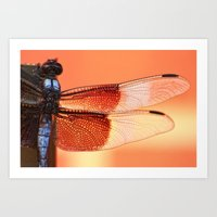 stained glass Art Prints featuring Stained Glass by Mark Alder