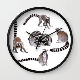 Ring-tailed lemur Wall Clock