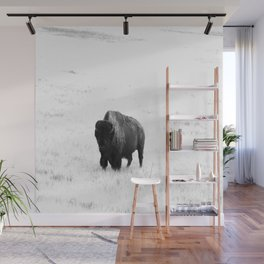 A Bison - Monochrome Wall Mural