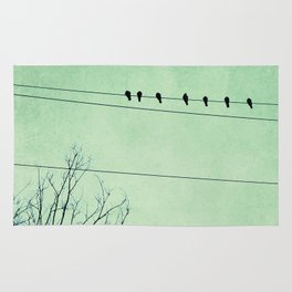 Birds on a Wire, no. 7 Rug
