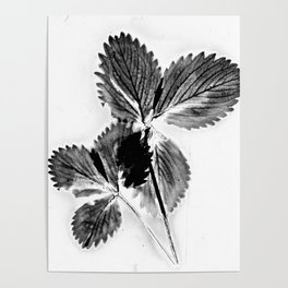 Strawberry Leaves Poster