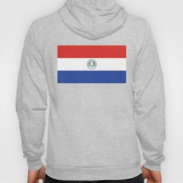Paraguay Flag, High Quality Authentic scale & color Hoody