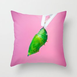 A green pupa of the tropical butterfly over pink background. Throw Pillow