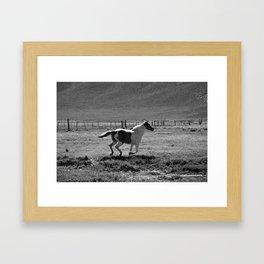 Wild 02 Framed Art Print