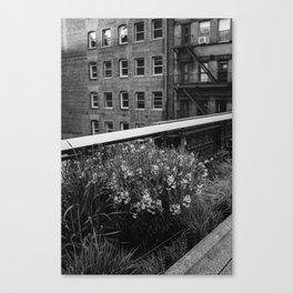 Highline Blooms II Canvas Print