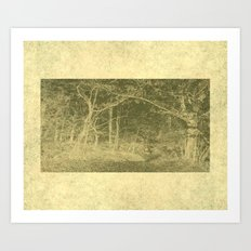 There is unrest in the forest Art Print