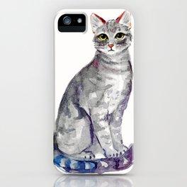 Kitty II iPhone Case