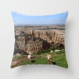 Bighorn Sheep At Sage Creek Throw Pillow