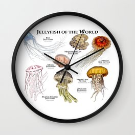Jellyfish of the World Wall Clock