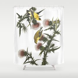 Goldfinch And Thistle Shower Curtain