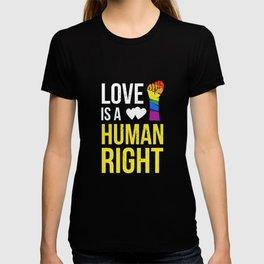 Love Is A Human Right & Gay Lesbian Pride Gift March & LGBT LGBTQ Apparel T-shirt