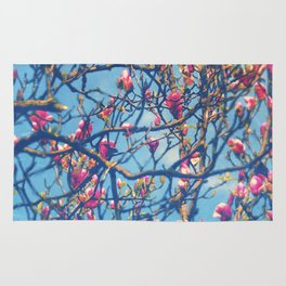 Spectacular Pink Grace: Oriental Magnolia Rug