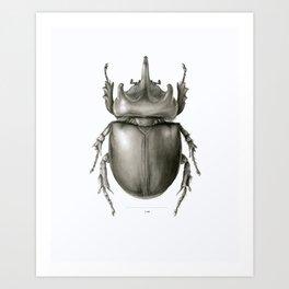 Ox Beetle/Strategus antaeus Art Print