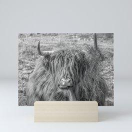 Black and white big Scottish Highland cow Mini Art Print