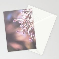 Dappled in Pink Stationery Cards