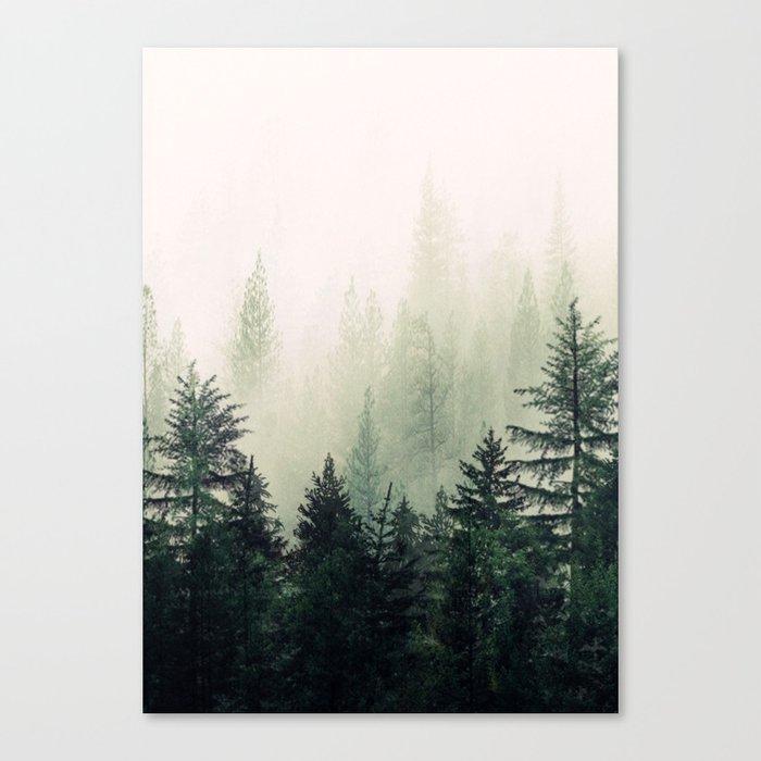 Foggy Pine Trees Leinwanddruck