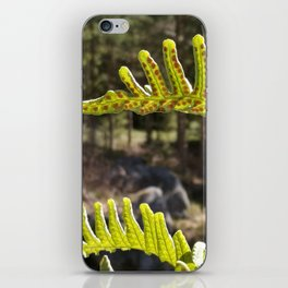 Sweet Fern iPhone Skin