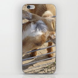 It really gets my goat when all those people stare at me iPhone Skin