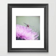 insect ~ sunny garden impression Framed Art Print