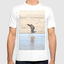 Seagull bird taking off T-shirt