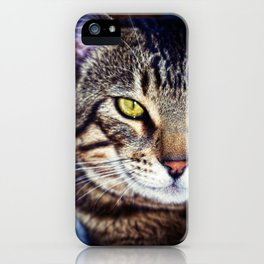 Bengal Tom Tabby Cat Portrait iPhone Case