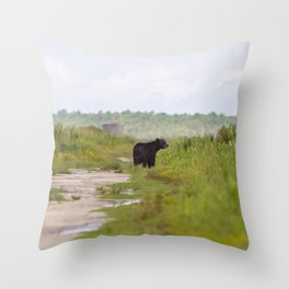 Adult Black Bear Throw Pillow
