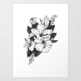 The Chinese Rose & The Tree Frog Art Print