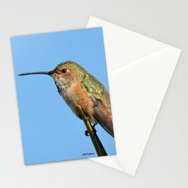 Grasping the Point Stationery Cards