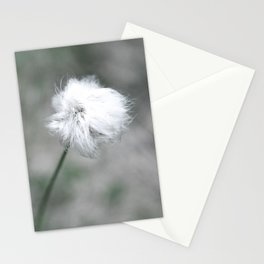 flower Stationery Cards