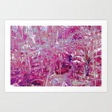 LSD I Art Print
