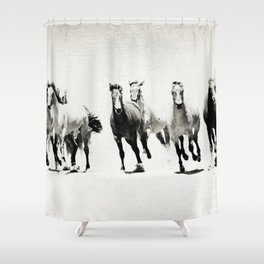Black and White Horses Shower Curtain