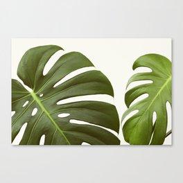 Verdure #6 Canvas Print