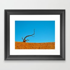 The Tree at Bryce Canyon National Park. Utah, USA Framed Art Print