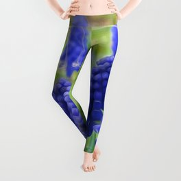 Heralds of Summer Leggings