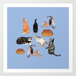 cats cats cats on light blue Art Print