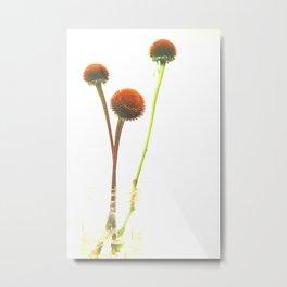 In the Simple Things Metal Print