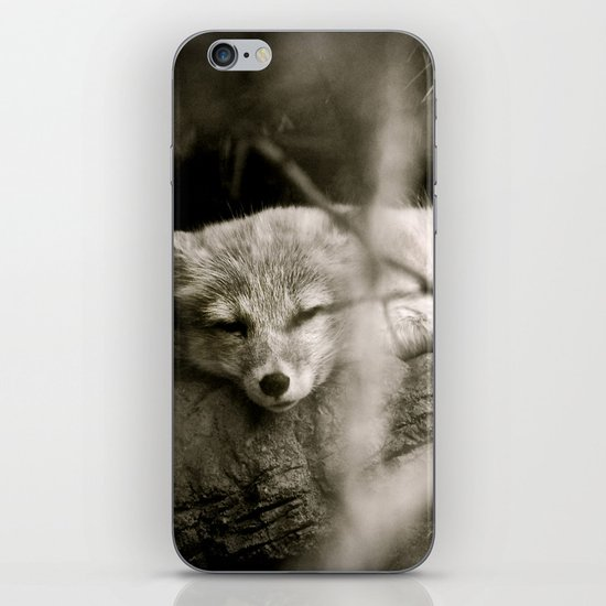 Nature's Finest Peace iPhone & iPod Skin
