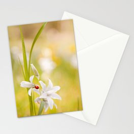 White flower with ladybug Stationery Cards