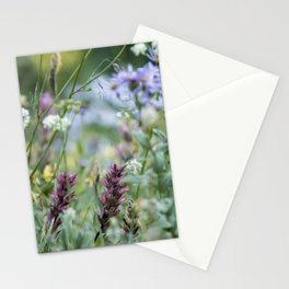 Wildflowers on the Mountain Stationery Cards