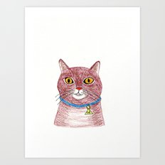 Crazy Cat Art Print