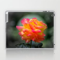 Rose 2138 Laptop & iPad Skin