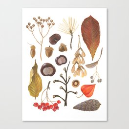 Autumn treasure chest Canvas Print