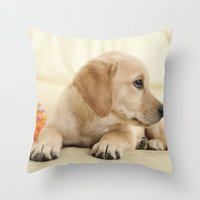 labrador Throw Pillows featuring Labrador puppy by Elisabeth Coelfen