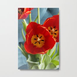 Red Tulips on Rich Teal  Metal Print