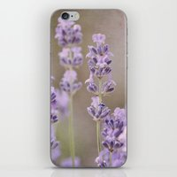 lavender iPhone & iPod Skins featuring lavender by Iris Lehnhardt