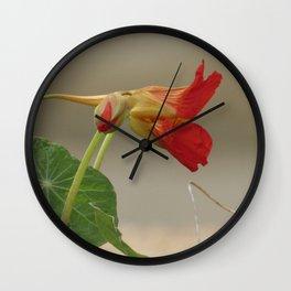 Nasturtium Wall Clock