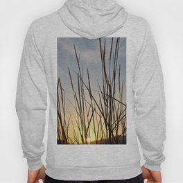 Wonderful sunset with teasel Hoody